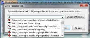 Favicons dans la liste déroulante de la boîte de dialogue d'ouverture d'une adresse dans SeaMonkey 2.24